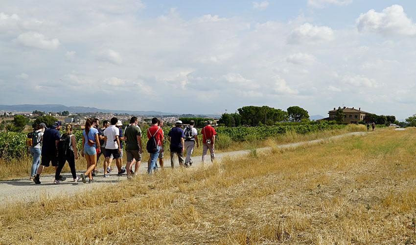 2021-08-03_camino_walking